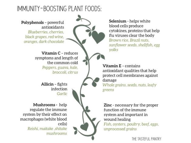 Immunity Boosting plants